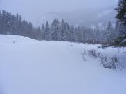 Snowy day on Gold Creek near Browns Gulch