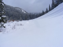 Looking up towards Gold Creek's headwaters