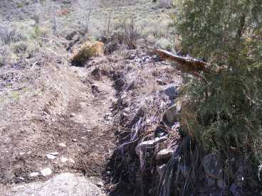 A new gully carved from the soil