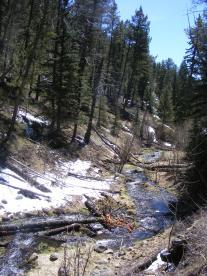 Snow on Bear Wallow Gulch