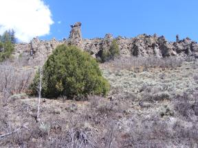 Hoodoos and such carved from the breccia on East Elk Creek
