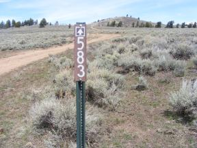 At the Gunnison National Forest boundary, a change in Federal public land management agencies