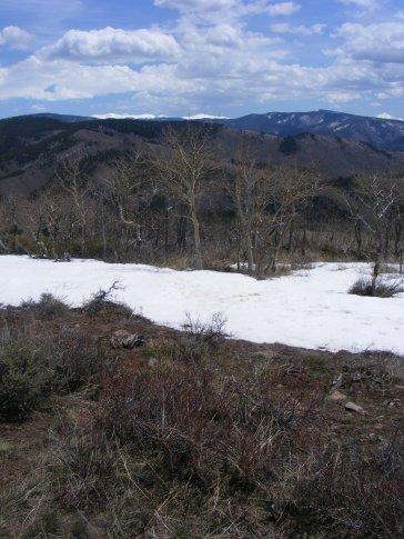 The cornices of snow help provide habitat for aspen