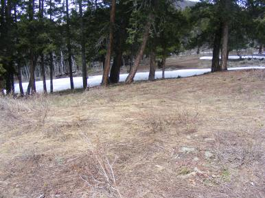 The last remnants of the winter snowpack
