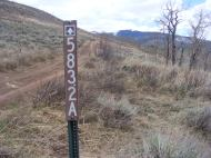 The road that I hiked down from the mesa to Alder Creek