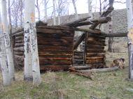 An old cabin above Alder Creek