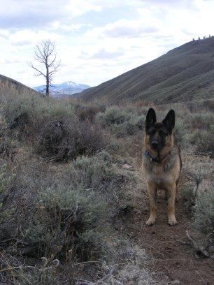 Leah on Alder Creek
