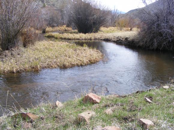 Alder Creek slowly flowing through a meadow