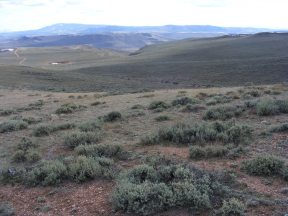 Looking south on North Parlin Flats, Sawtooth Mountain on the horizon, a few patches of snow remaining here and there