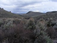 Looking south out of Magpie Gulch