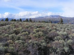 Looking north from Point 9025, from right to left: Carbon Peak, Mount Axtell, Whetstone Mountain and Red Mountain