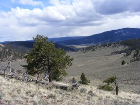The confluences of Lightening, Home and Rocky Gulches occurs in the sagebrush steppe of the Gunnison Country