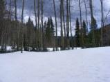 The snowpack on Quartz Creek