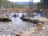 Quartz Creek flowing into a beaver pond