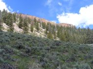 Looking up to the dividing ridge between Sun and North Beaver Creeks, capped with lava