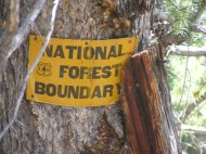 Close up of old National Forest sign