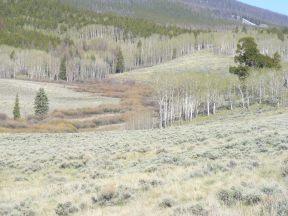 The upper headwaters of Alkali Creek
