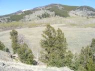 Looking over the southern tributary to Alkali Creek
