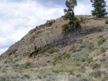 An ordinary yet captivating outcropping south of Alkali Gulch