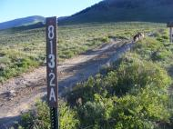 Gunnison National Forest Road 813.2A, at the summit of Jack's Cabin Cutoff