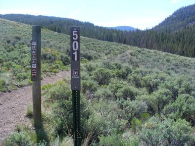 Gunnison National Forest Trail 501 at Lower Park