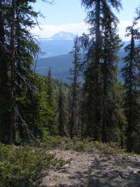 Looking over to the Sawatch Range from the Cochetopa Hills on Trail 486