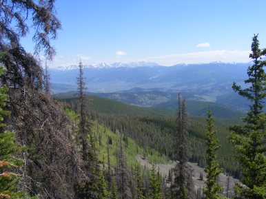 A break in the forest allows this view of the Sawatch Range
