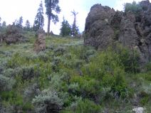 An outcropping of what might be breccia on West Branch