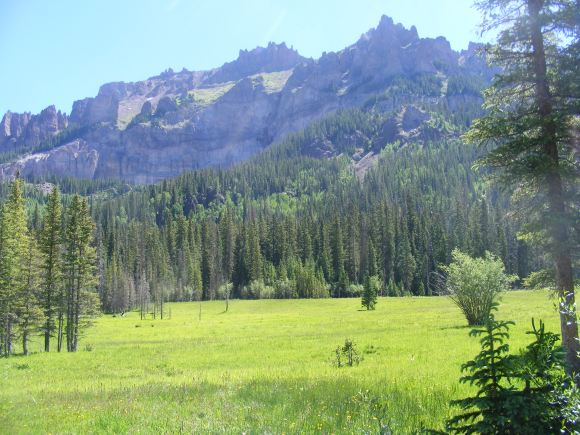 Meadow on the Middle Fork Cimarron River