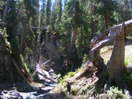Detritus filled gully in the Uncompahgre Wilderness