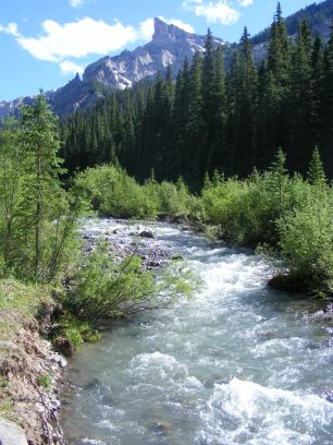 The Middle Fork of the Cimarron River in the Uncompahgre Wilderness