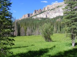 Verdant meadow along the Middle Fork of the Cimarron River