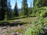 At about twelve thousand feet on the Larson Lakes Trail