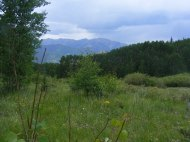 Thunderheads gathering above the San Juan Mountains as I hike on Waterdog Trail