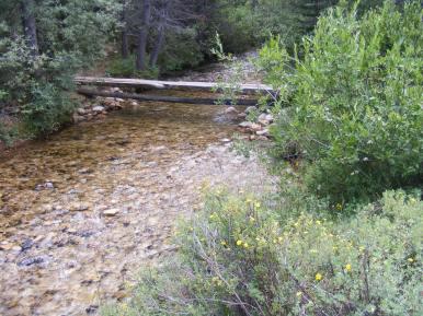 Footbridge across Brown's Creek