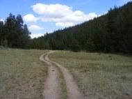 Brown's Creek Trail, looking east