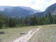 Brown's Creek Trail, looking west