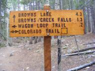 Signage at the junction of Brown's Creek Trail and the Colorado Trail