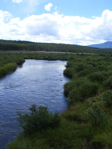 Texas Creek, looking towards Taylor Park