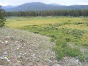 The Sawatch Range beyond this meadow on Texas Creek
