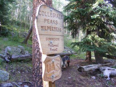 Entering the Collegiate Peaks Wilderness