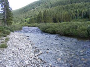 Texas Creek looking upstream, notice the waters from Waterloo Gulch coming in from the left