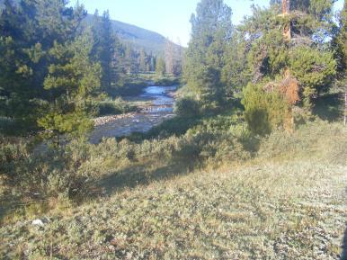 Texas Creek in morning