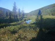 A small pond near Texas Creek, looking west, in the Collegiate Peaks Wilderness