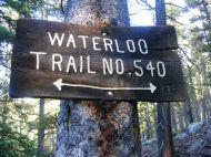 Sign on tree, Collegiate Peaks Wilderness