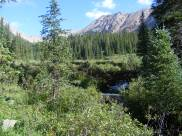 On the hike to Waterloo Gulch