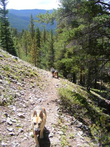 Draco and Leah on the Waterloo Gulch Trail No. 540