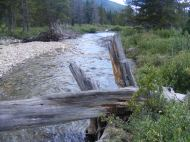 Texas Creek in the Collegiate Peaks Wilderness
