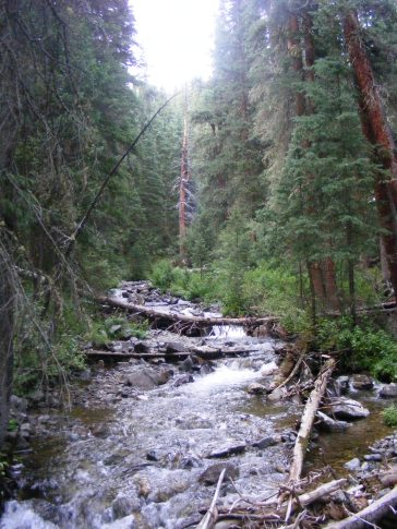 North Texas Creek
