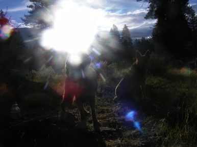 The sun over Texas Creek, Draco and Leah at camp